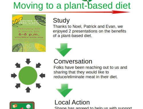 Moving to a plant-based diet