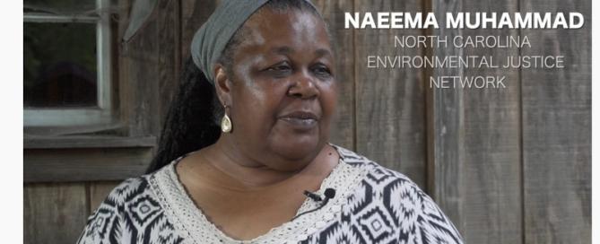 Naemma