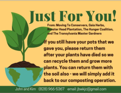 Potting plants for the Hunger Coalition giveaway on August 23rd