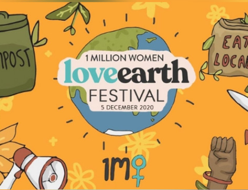 LoveEarth Festival – information shared by a member